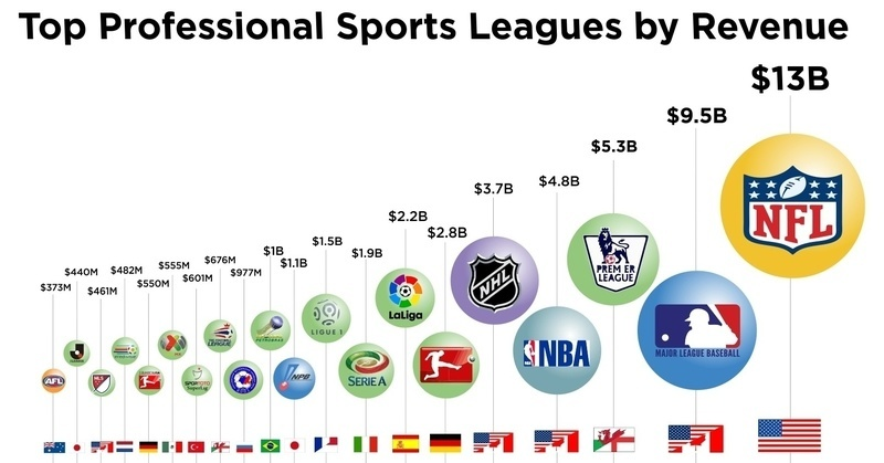 Top Professional Sports Leagues By Revenue